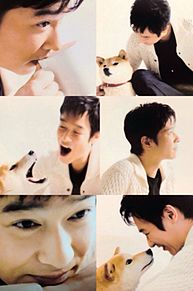 堺雅人の画像(ひまわりと子犬の7日間に関連した画像)