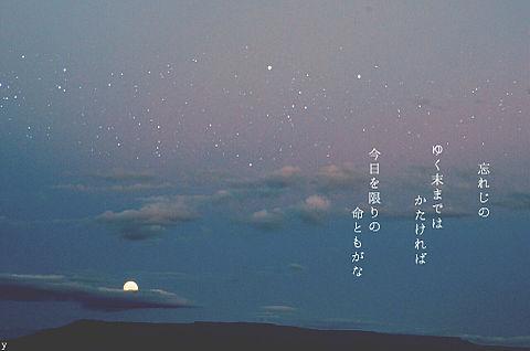 和歌の画像(プリ画像)