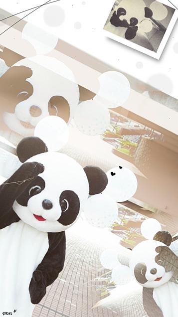 ▷▶︎ロック画面  #岸パンダの画像(プリ画像)