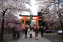 桜&パワースポットを同時に楽しめる場所とは?の画像(パワースポットに関連した画像)
