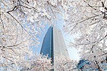 幻想的な夜桜ライトアップも 東京ミッドタウンで期間限定花見イベント開催の画像(東京ミッドタウンに関連した画像)