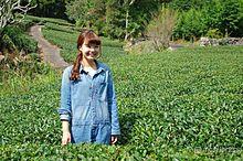 美容と健康の鍵、静岡美女が教える美味しいお茶の見分け方の画像(美容・健康に関連した画像)