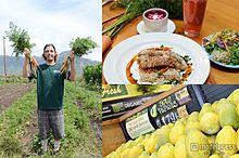 """ハワイのオーガニックを""""五感""""で味わう最新ツアー 話題のスーパーフードも網羅【アウラニ体験レポvol.5】の画像(スーパーフードに関連した画像)"""