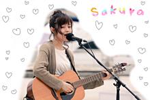 sakura fujiwaraの画像(Fujiwaraに関連した画像)