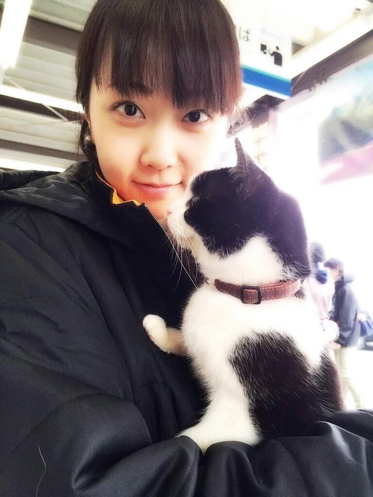 猫と木南晴香