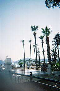 CALIFORNIAの画像(カリフォルニアに関連した画像)