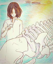 くじらの骨の画像(個室。に関連した画像)