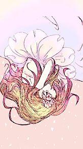 桜の画像(個室に関連した画像)