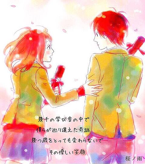 桜ノ雨の画像(プリ画像)