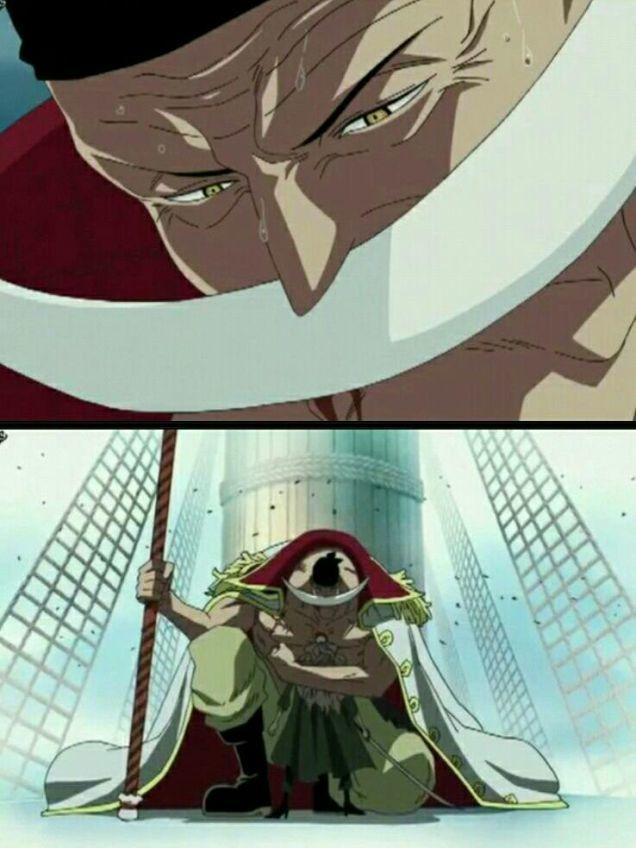 白ひげ海賊団をまとめる船長。