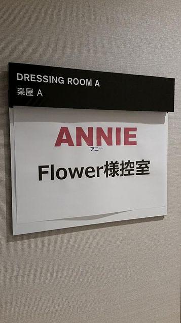 Flower アニーの画像(プリ画像)