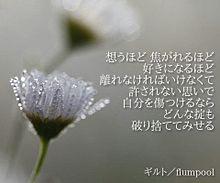 flumpool 歌詞画の画像(ギルトに関連した画像)