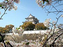 岸和田城 プリ画像