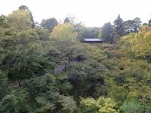 日本の美しい景色 東福寺 通天橋の画像(東福寺に関連した画像)