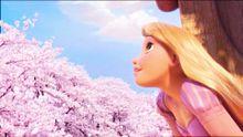 桜ラプンツェルの画像(プリ画像)