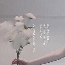 lonely プリ画像