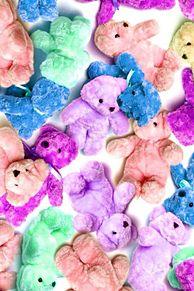 teddy bearの画像(テディベア 高画質に関連した画像)