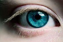 Blue eyeの画像(青い瞳に関連した画像)