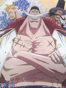 ワンピース 白ひげ マルコ ビスタの画像(ワンピース 白ひげ マルコ ビスタに関連した画像)
