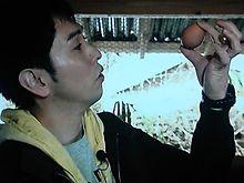 卵 プリ画像