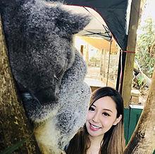 2017/12/1写メ(オーストラリア・シドニー)の画像(シドニーに関連した画像)