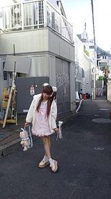 2012/11/15写メ(原宿)の画像(ナイルパーチに関連した画像)
