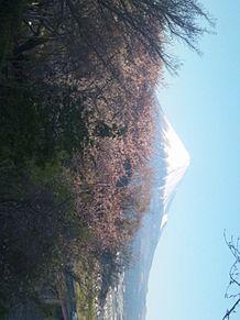 Mt.富士の画像(MTに関連した画像)