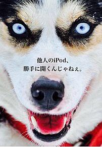 ロック画面の画像(怖い 犬に関連した画像)