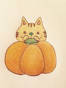 かぼちゃとねこの画像(プリ画像)