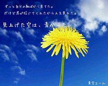 青空エール プリ画像