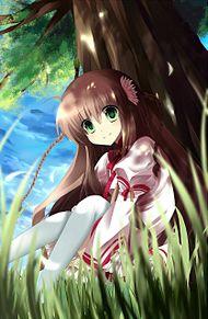 神戸小鳥♪の画像(可愛い/かわいい/カワイイに関連した画像)