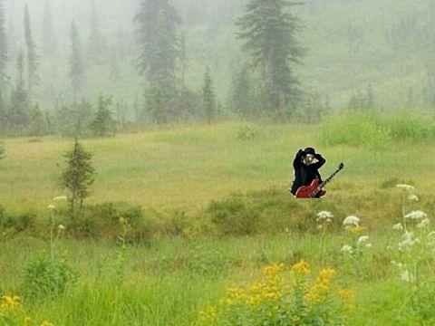 草むらで曲をつくるとは←の画像(プリ画像)