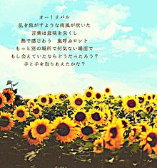 業火の向日葵の画像(名探偵コナン/コナンに関連した画像)
