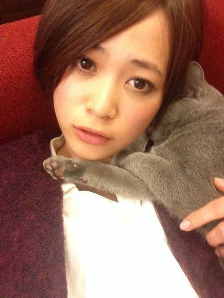 ネコと坂田梨香子