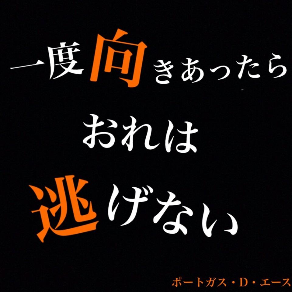 One Piece 名言 エース 32045279 完全無料画像検索のプリ画像 Bygmo