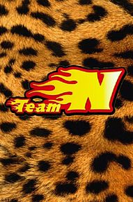 teamN*フラッグの画像(加工/ロゴに関連した画像)