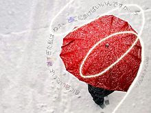 ツノルキモチの画像(傘に関連した画像)