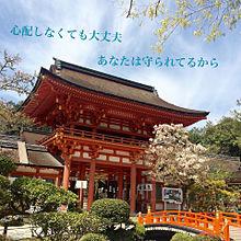 上加茂神社の画像(パワースポットに関連した画像)