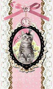 帽子猫の画像(猫 おしゃれに関連した画像)