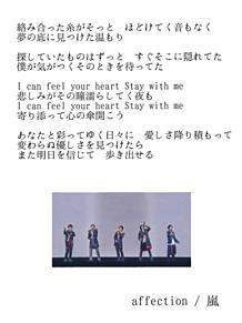 affection / 嵐白地