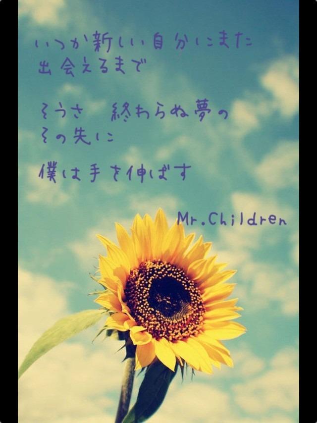 Mr Children                                       Sunflowers Tumblr Quotes