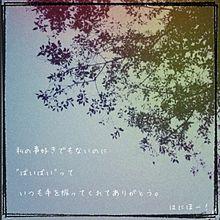 ☆リクエスト☆の画像(プリ画像)