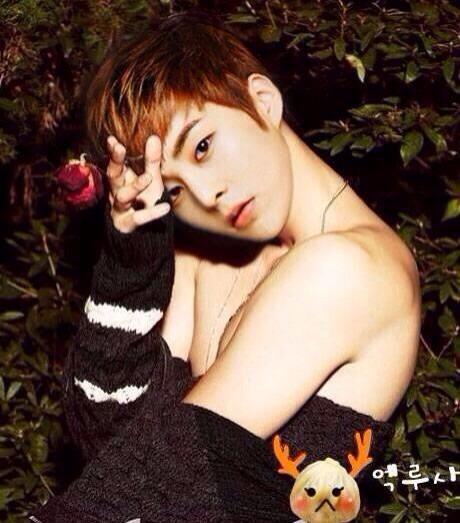 EXO XIUMIN                             Xiumin Hot