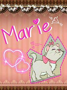 マリーちゃんの画像(猫 おしゃれに関連した画像)