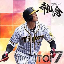 糸井嘉男の画像(阪神タイガースに関連した画像)