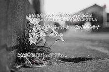 KAKUMEI 歌詞画の画像(SilentSirenに関連した画像)