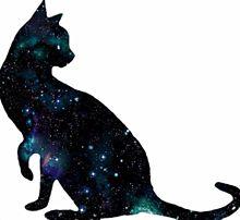 再配布禁止!宇宙柄猫第三弾!!の画像(猫 おしゃれに関連した画像)