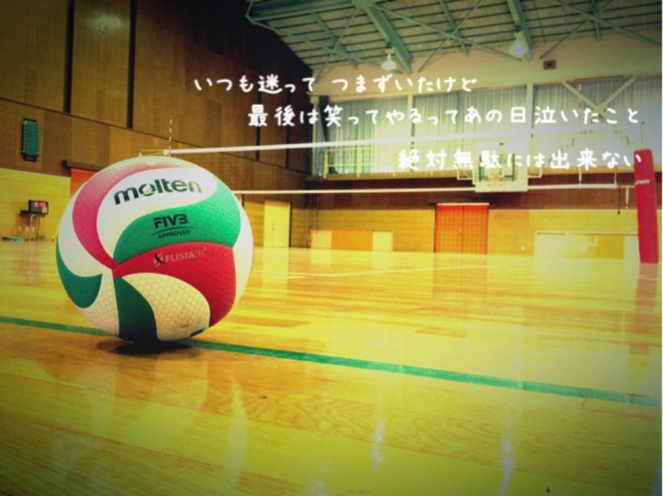 バレーボールの画像 p1_35