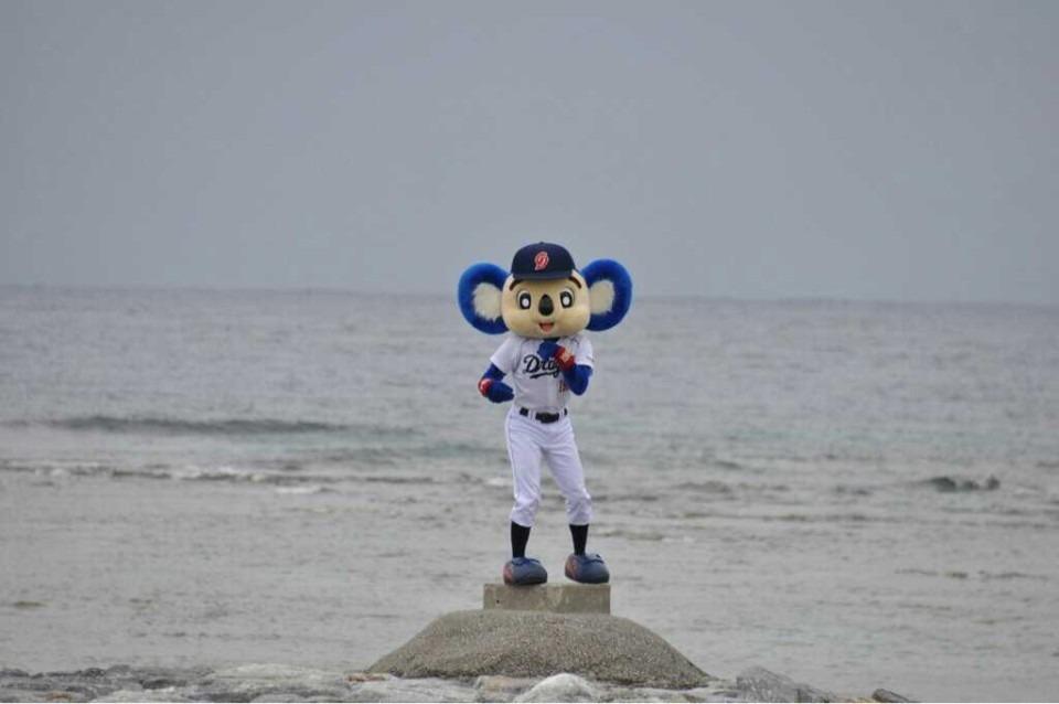 砂浜に立っているドアラです。