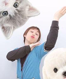 猫と犬と私 プリ画像